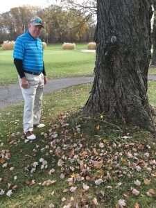 Best golf ball for senior golfers - PG Golf Links